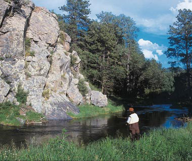 South dakota fly fishing totalflyfishing picture of the spring creek sciox Image collections