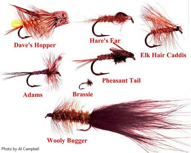 flies for the black hills of south dakota