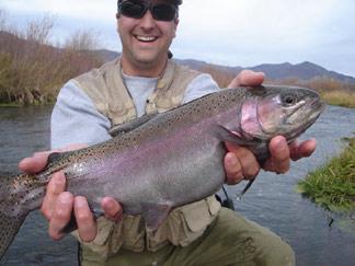 Utah fly fishing totalflyfishing fishing image of provo river rainbow trout publicscrutiny Images