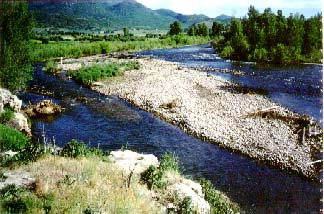 pic of provo river bend